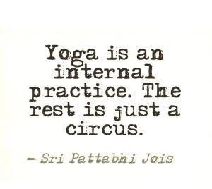 yogi 1